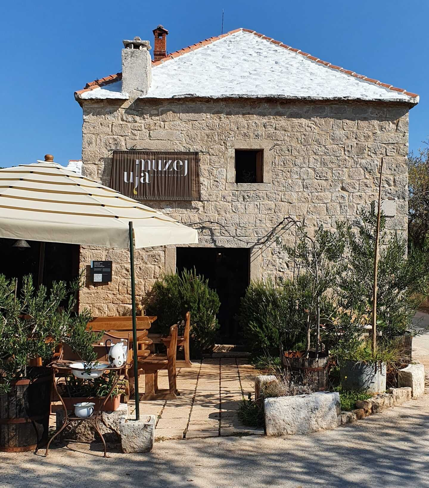 Split to Brač Day Trip with a visit to Olive Museum - Croatia Private Tours