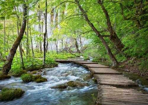 croatia private tours - plitvice lakes private tour