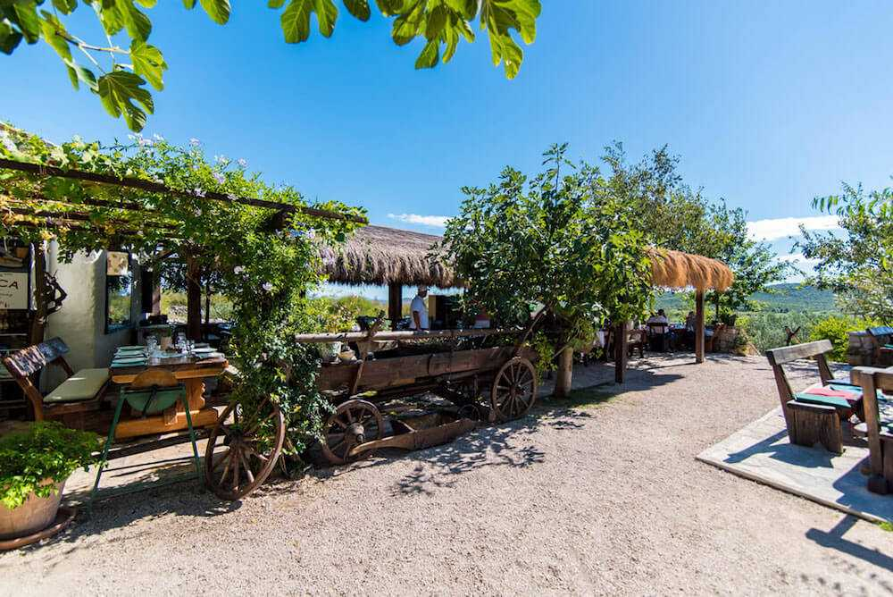 Split to Zadar Private Transfer with Krka Waterfalls and Family Farm Restaurant