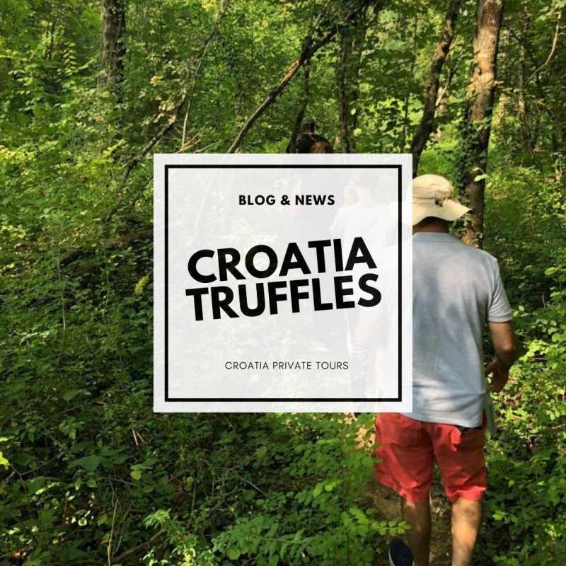 Croatia Travel & Guide Blog - croatia truffles